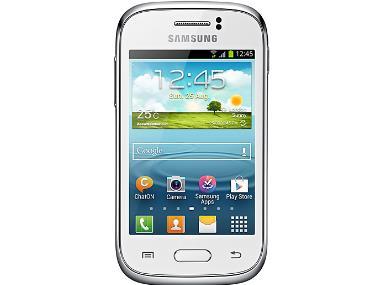 三星Galaxy Style Duos (i8262D) 線刷包